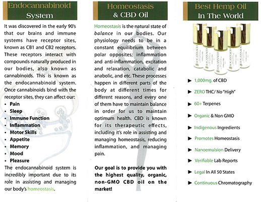CBD Oil and Your Health